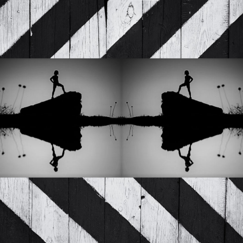 a graphic symmetrical image of two figures facing each other with empty space between them